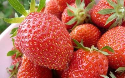 British strawberries – a taste of summer