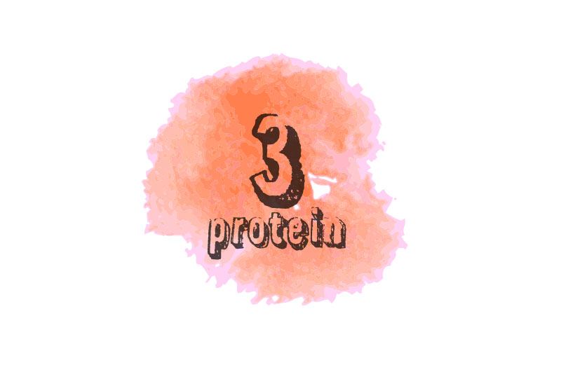 protein - The Artisan Food Trail