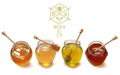 Bees & Co. launch online honey tasting experience