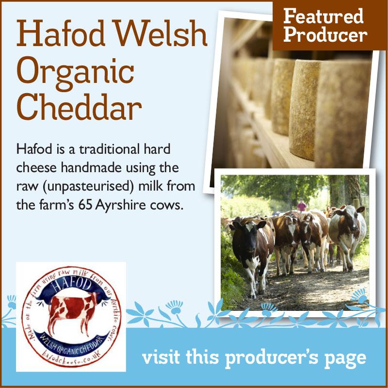 Hafod Welsh Organic Cheddar – The Artisan Food Trail