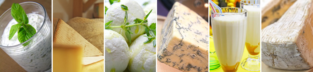 dairy - The Artisan Food Trail