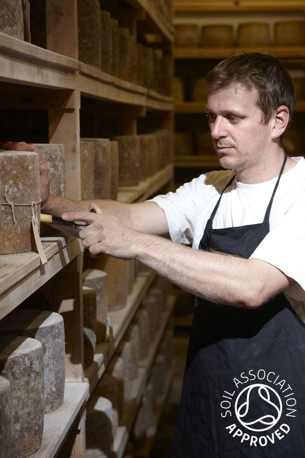 Hafod Welsh Organic Cheddar 4 - Artisan Food Trail