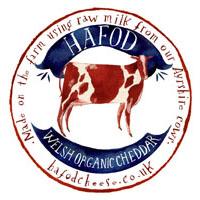 Hafod Welsh Organic Cheddar 1 - Artisan Food Trail