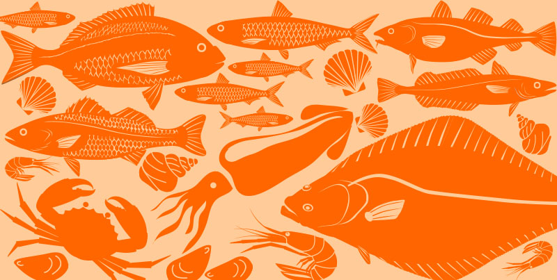 Foods in Season – Fish and Seafood Autumn
