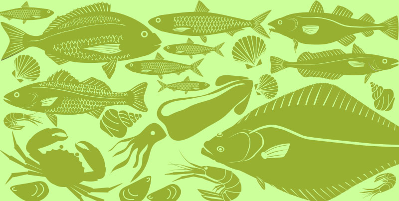 Foods in Season – Fish and Seafood Spring