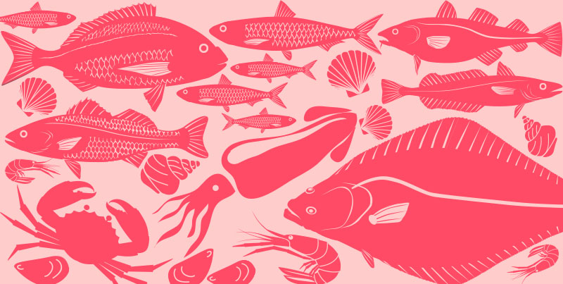 Foods in Season – Fish and Seafood Summer