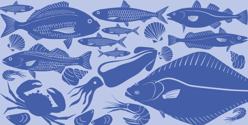 Foods in Season – Fish and Seafood Winter