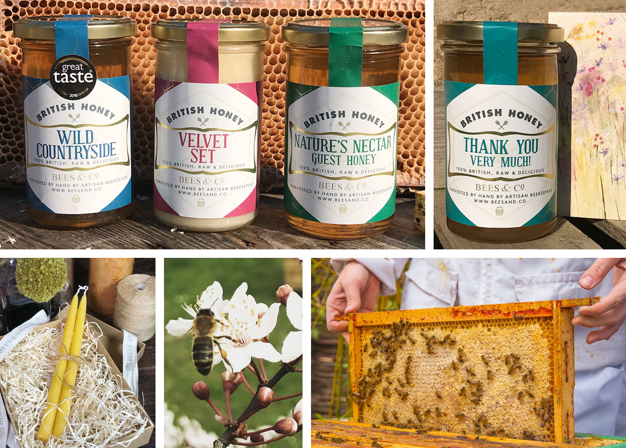 Bees and Co 2 - the artisan food trail