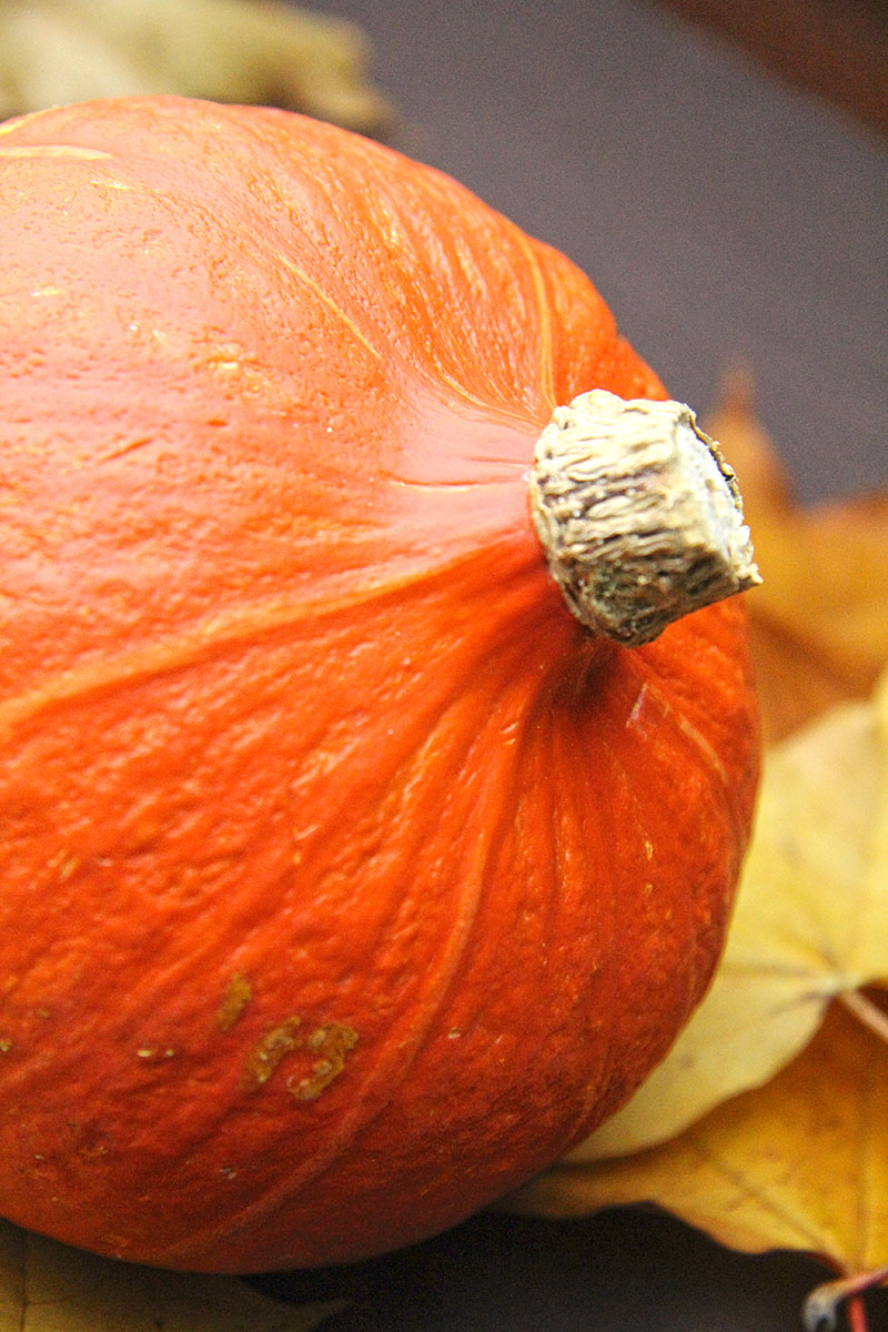 Pumpkin Risotto 2 - The Artisan Food Trail